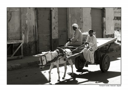 32transport egypte.jpg